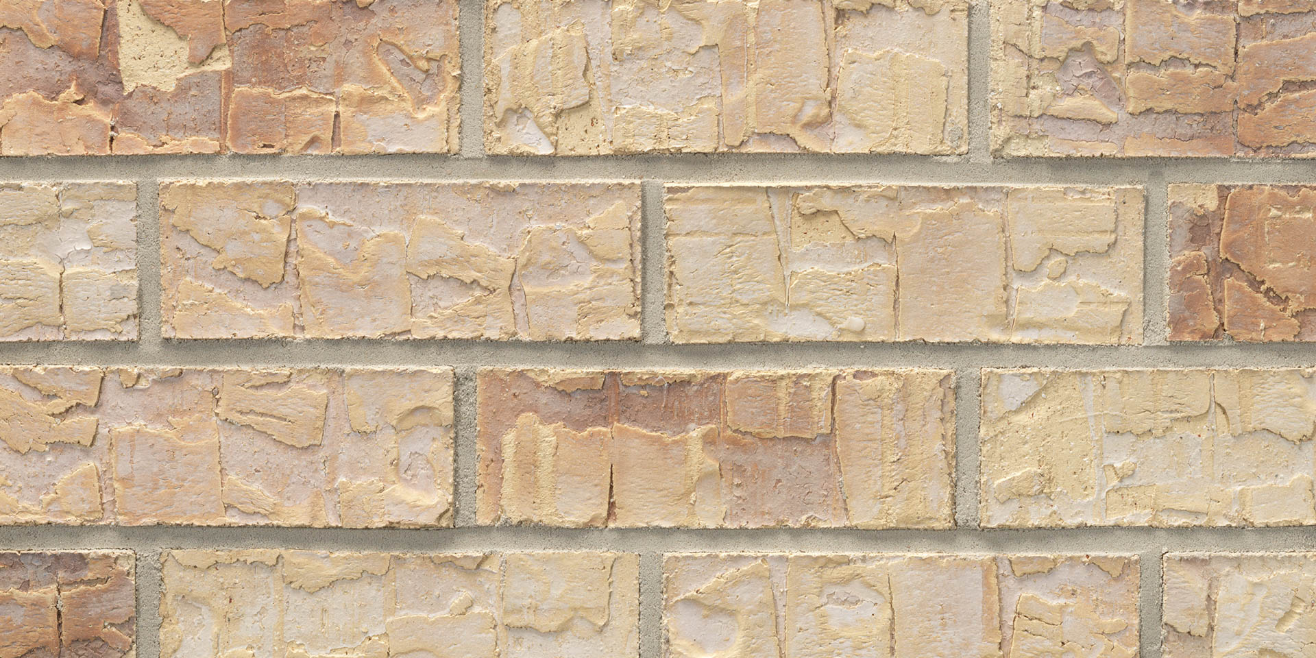 Acme® Brick Denver Old Charleston Modular Brick, Heritage